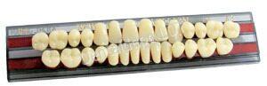 Выбора искусственных зубов