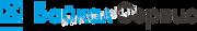 байкал-сервис-logo
