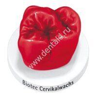 biotec-cervikalwachs_28g_51000612.jpg